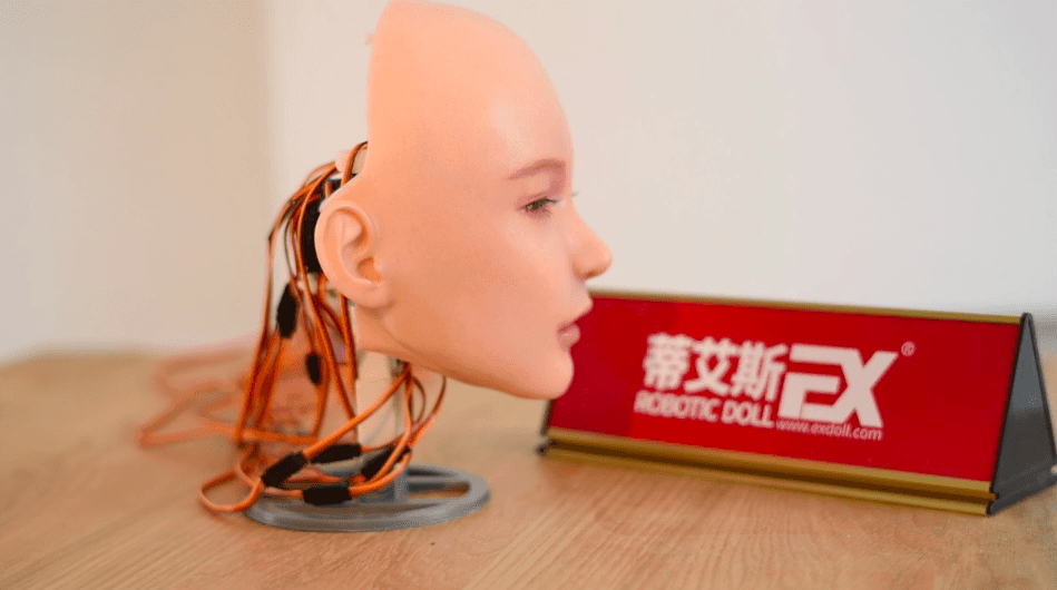 First Generation Robotic Head