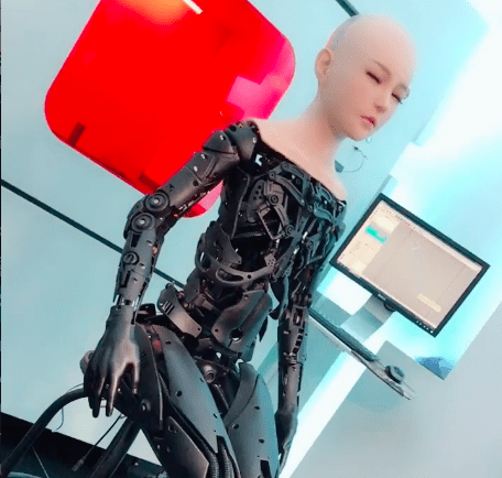 Sex Robot Skeleton Development
