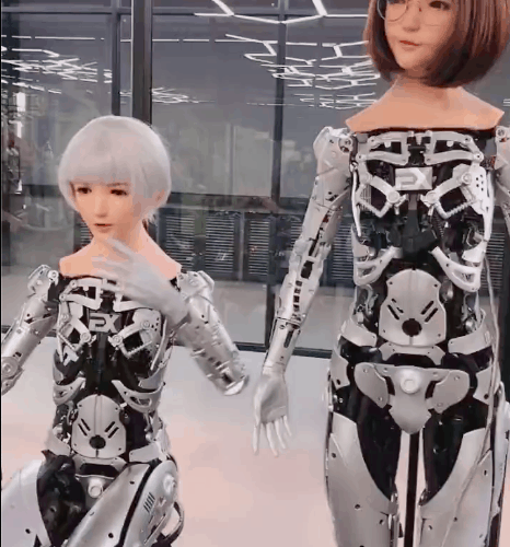 DS Doll Two Robots
