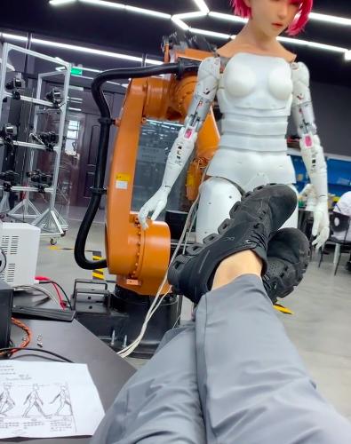 Walking Robots at EX Robot and DS Doll Robotics.