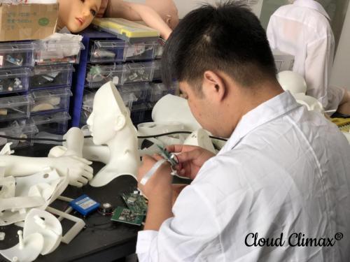 DS Doll Robotics Laboratory